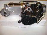 Motor komplett 10 Zoll QMB125ccm 4Takt GY6 152QMI